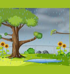 raining in garden vector image