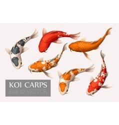 Set koi carps vector