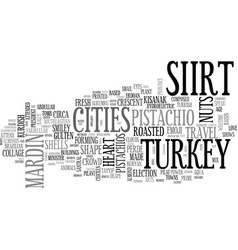 shirt word cloud concept vector image