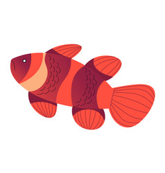 Tropical sea animal goldfish with stripes vector
