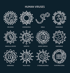 virus types icon set in line style vector image