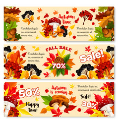 Autumn sale discount fall banners set vector