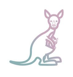 cute kangaroos icon image vector image
