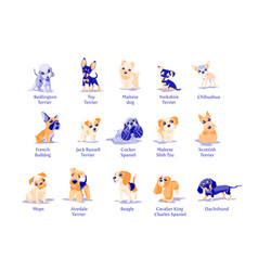 Dogs1 vector