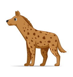 Hyena animal standing on a white background vector