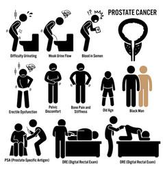 Prostate cancer symptoms causes risk factors vector