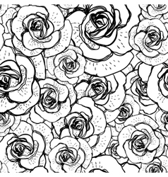 Seamless black and white background with roses vector image