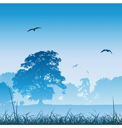 country meadow landscape vector image vector image