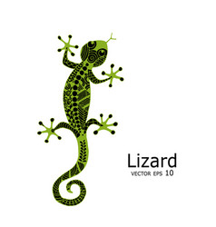 green lizard sketch zenart for your design vector image vector image