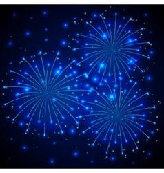 Firework vector image