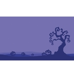 Silhouette of pumpkins and dry tree halloween vector