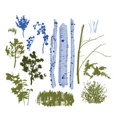 Collection isolated plants for mixed forest vector