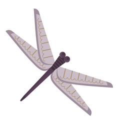 dragonfly for japanese pattern vector image