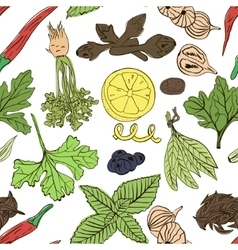 Hand drawn seamless pattern of spices vector image