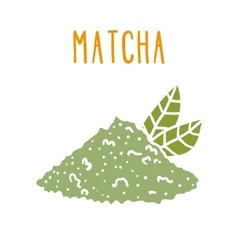 Matcha tea powder vector image