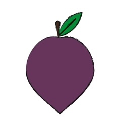 Plum fruit icon vector
