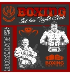 Set - boxing world champion labels and vector