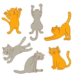 set of kittens vector image