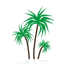 Simple tropical green palm trees symbols eps10 vector