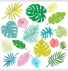 trendy summer tropical palm leaves jungle leaves 1 vector image
