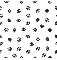 cat paw vector image vector image