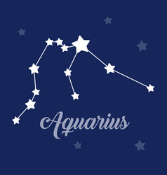 aquarius sign constellation icon on dark vector image