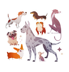 cartoon dogs different breeds and sizes vector image