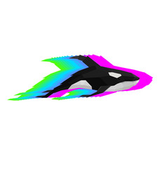 Creative of orca with glitch effect vector