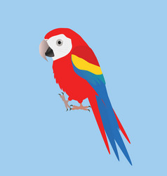 Funny scarlet macaw vector