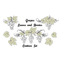 Grape pictograph set vector