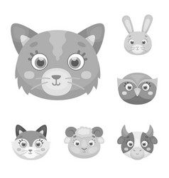 muzzles of animals monochrome icons in set vector image