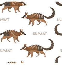 seamless pattern with numbats colored vector image
