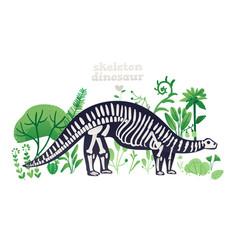 skeleton and bones a brontosaurus in flat vector image