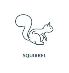 Squirrel line icon linear concept outline vector