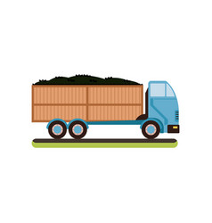 Truck with ripe olives on a vector