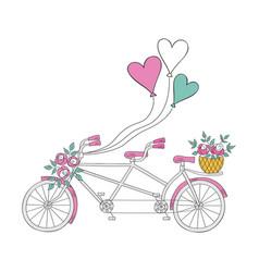 wedding bike vector image