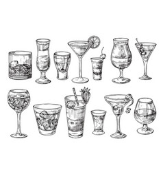 Hand drawn cocktail alcoholic drinks in glasses vector