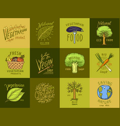 Healthy organic food logos set or labels and vector