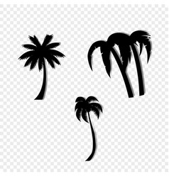 palm trees icon set isolated on transparent vector image