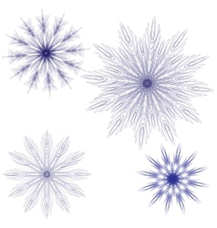 round lace pattern vector image