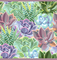 Seamless pattern with high detail succulent vector