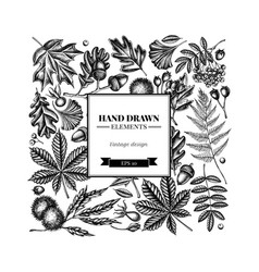 Square design with black and white fern dog rose vector
