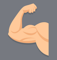 strong arm with contracted biceps vector image