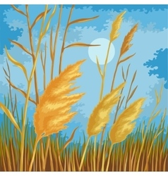 Yellow reed leaves vector