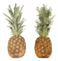 pineapple fruit triangle design vector image