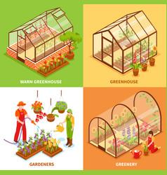 greenhouse design concept set vector image