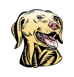 golden labrador retriever dog head vector image