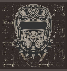 Grunge style pit bull wearing helmet retrohand vector