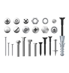 Metal bolts screws nuts and nails or fasteners vector