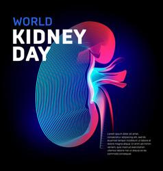 world kidney day health bean human organ vector image